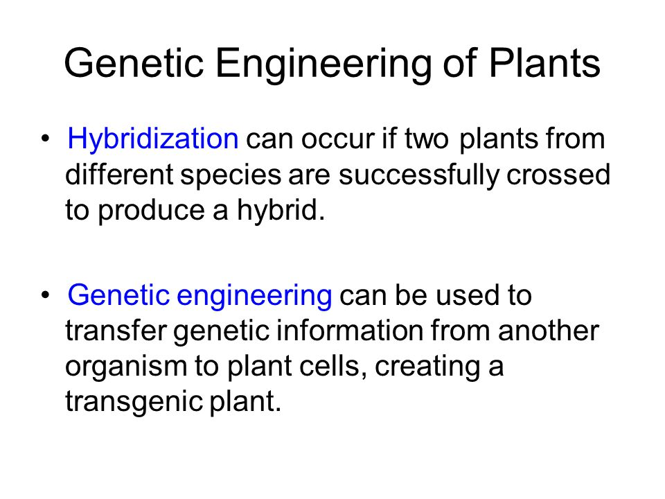 Genetic Engineering of Plants Hybridization can occur if two plants from different species are successfully crossed to produce a hybrid. Genetic engin