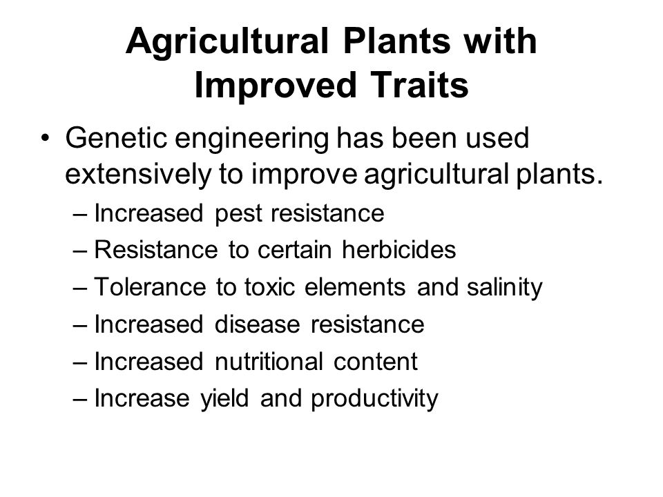 Agricultural Plants with Improved Traits Genetic engineering has been used extensively to improve agricultural plants. –Increased pest resistance –Res