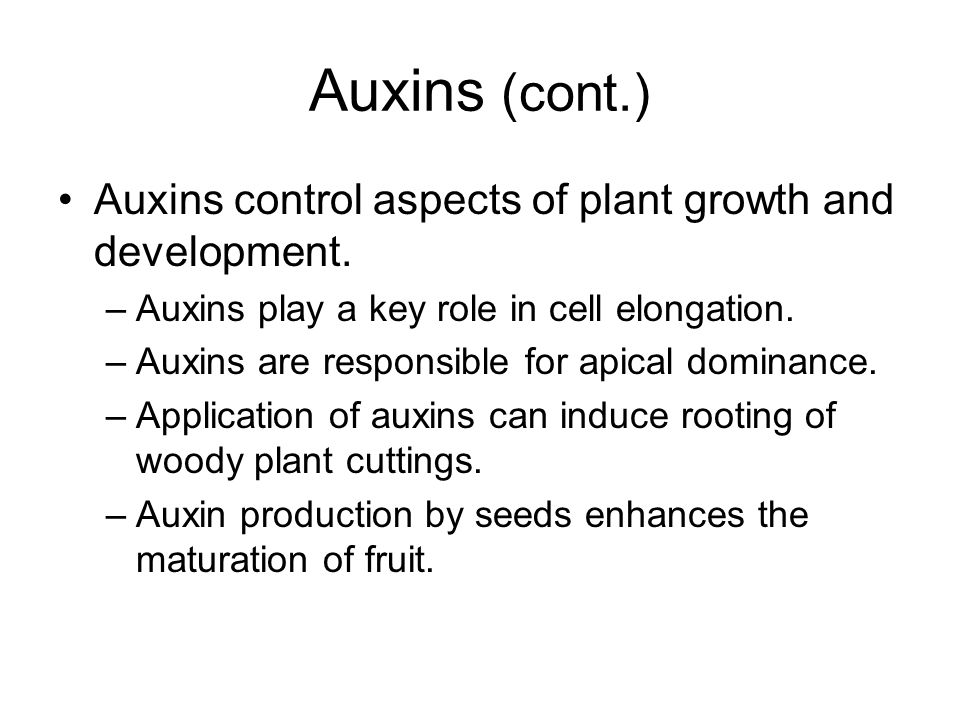 Auxins (cont.) Auxins control aspects of plant growth and development. –Auxins play a key role in cell elongation. –Auxins are responsible for apical
