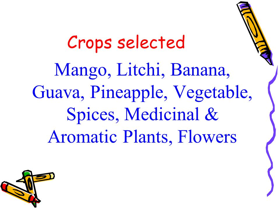 More Districts to be included Begusarai Khagaria Madhubani Jamui These are potential districts with high productivity of fruit crops