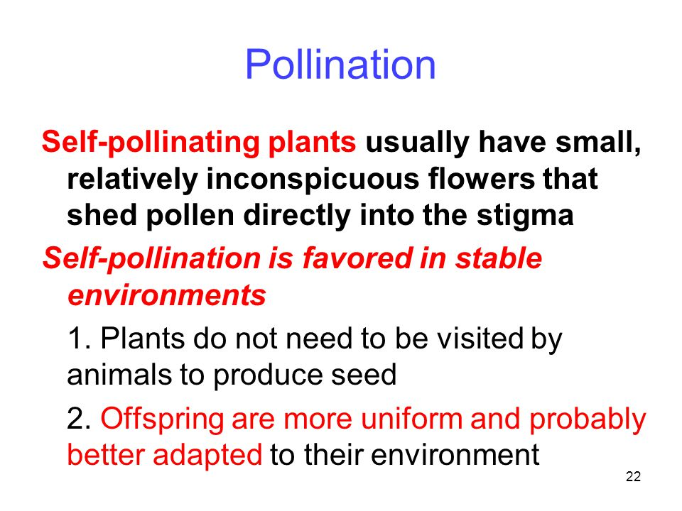 22 Pollination Self-pollinating plants usually have small, relatively inconspicuous flowers that shed pollen directly into the stigma Self-pollination