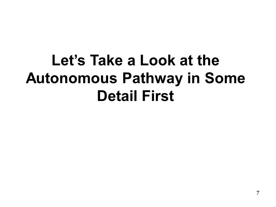 7 Lets Take a Look at the Autonomous Pathway in Some Detail First