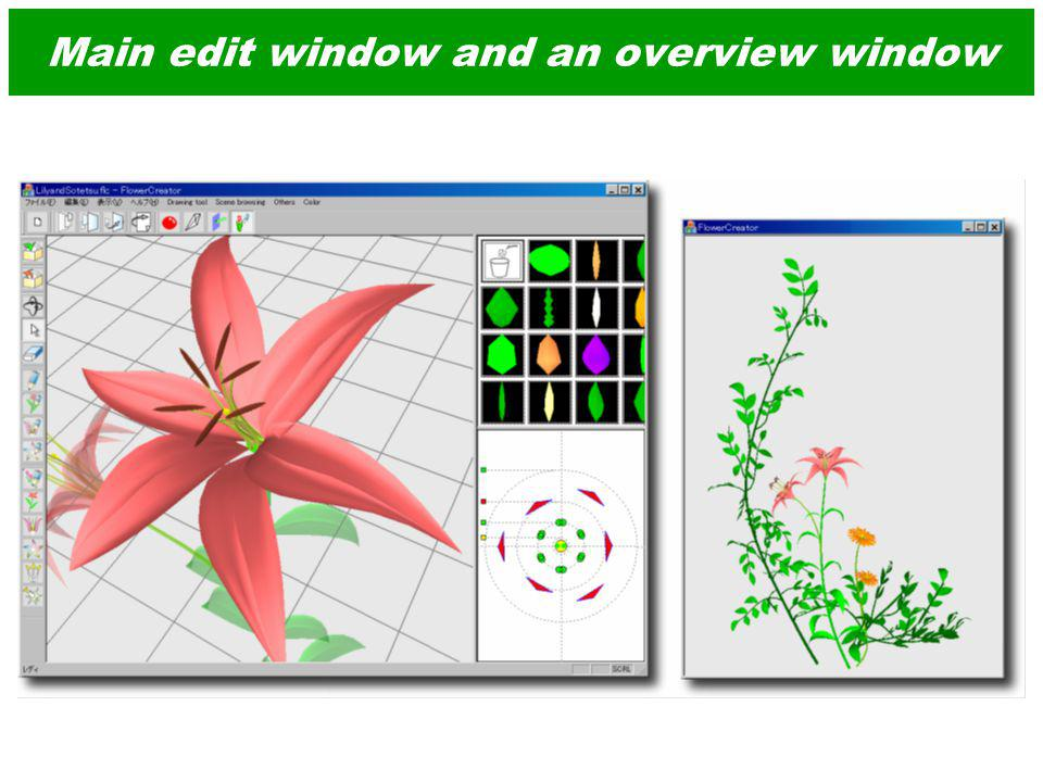 Main edit window and an overview window