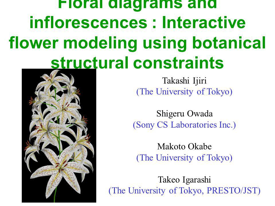 Contribution Interaction techniques –A specific system to model flowers quickly and easily –Provide structural information of flowers developed by botanists : floral diagrams & inflorescences Separating structural editing and geometry editing –Provide sketching interfaces for user convenience