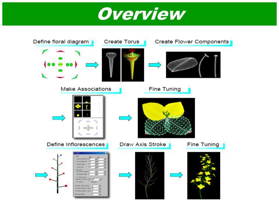 Floral Diagram Editor (a) Edior(b) Brassica Rapa(c) Ranunculus acris