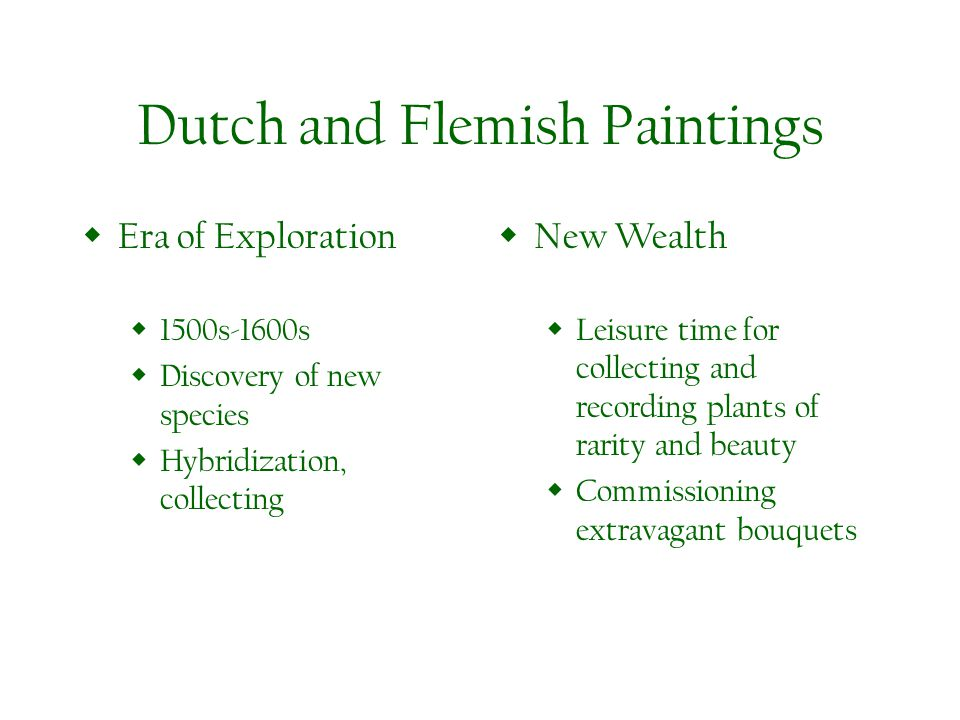 Dutch and Flemish Paintings Era of Exploration 1500s-1600s Discovery of new species Hybridization, collecting New Wealth Leisure time for collecting a