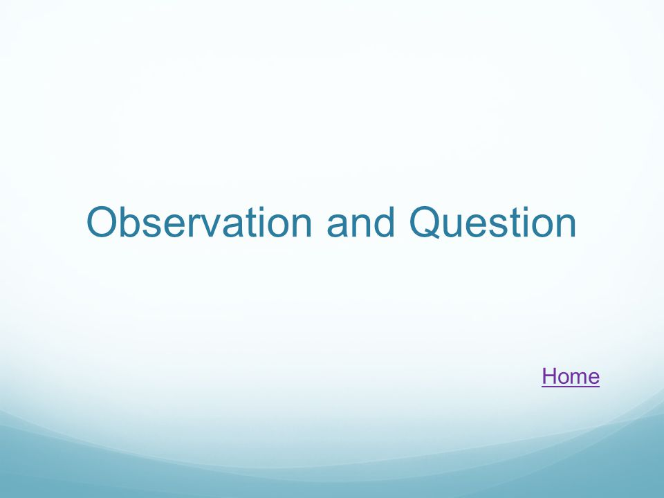 Observation and Question Home