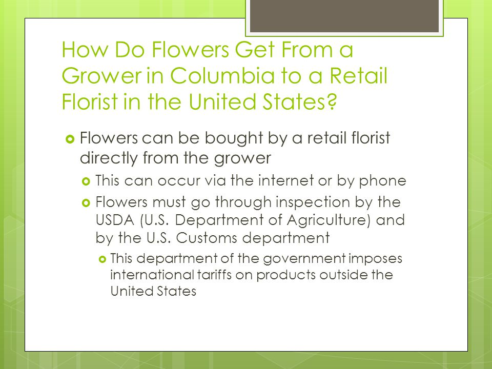 How Do Flowers Get From a Grower in Columbia to a Retail Florist in the United States.