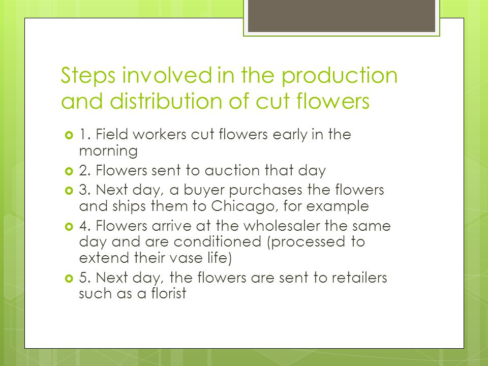 Steps involved in the production and distribution of cut flowers 1.
