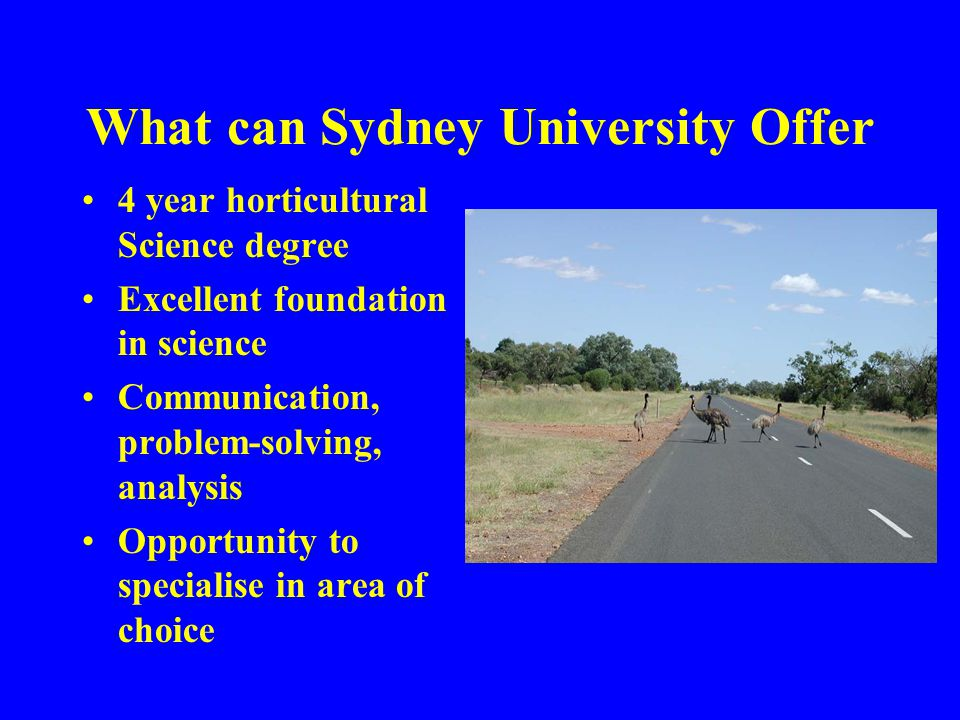 What can Sydney University Offer 4 year horticultural Science degree Excellent foundation in science Communication, problem-solving, analysis Opportunity to specialise in area of choice