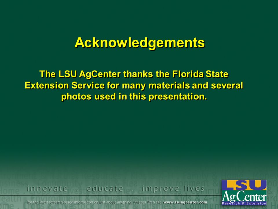 Acknowledgements The LSU AgCenter thanks the Florida State Extension Service for many materials and several photos used in this presentation. The LSU