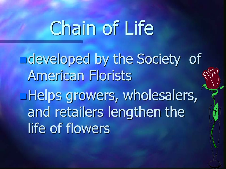 Chain of Life n developed by the Society of American Florists n Helps growers, wholesalers, and retailers lengthen the life of flowers