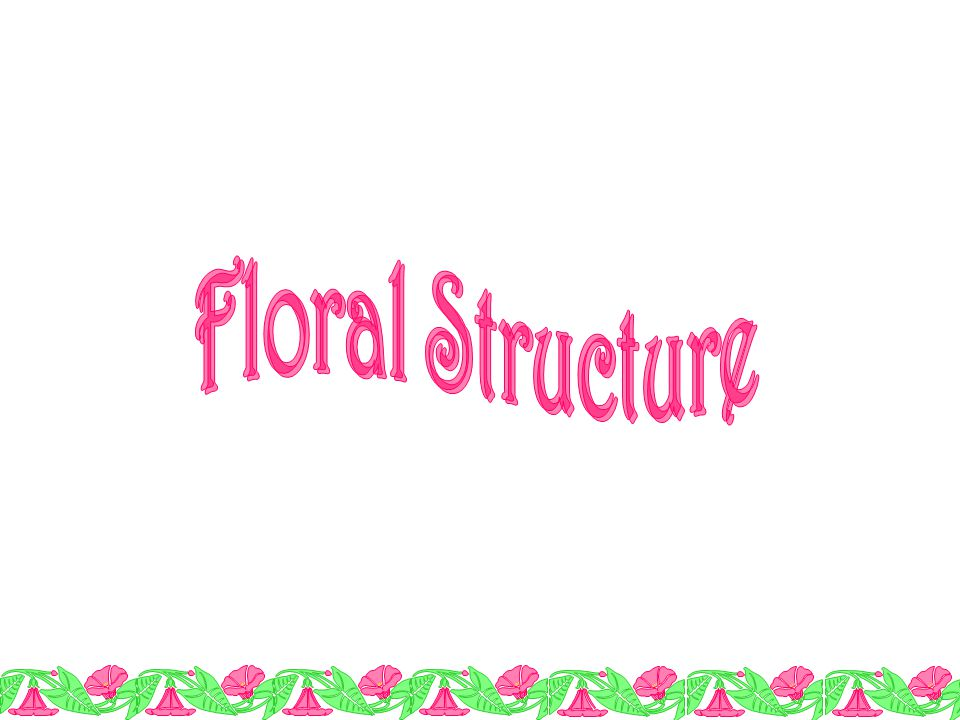 The flower is the reproductive structure of higher plants.