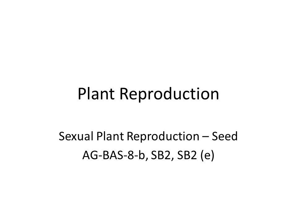 Plant Reproduction Sexual Plant Reproduction – Seed AG-BAS-8-b, SB2, SB2 (e)