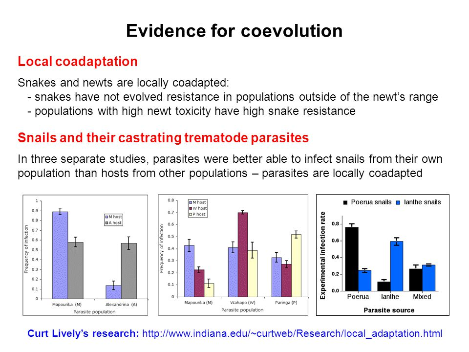 Evidence for coevolution Local coadaptation Snakes and newts are locally coadapted: - snakes have not evolved resistance in populations outside of the