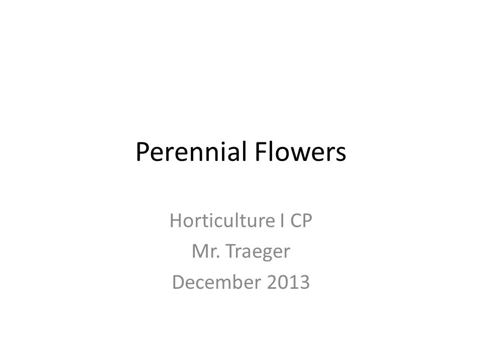Perennial Flowers Horticulture I CP Mr. Traeger December 2013
