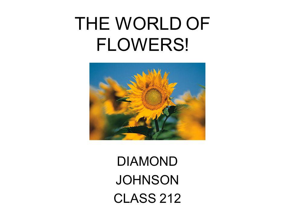 THE WORLD OF FLOWERS! DIAMOND JOHNSON CLASS 212