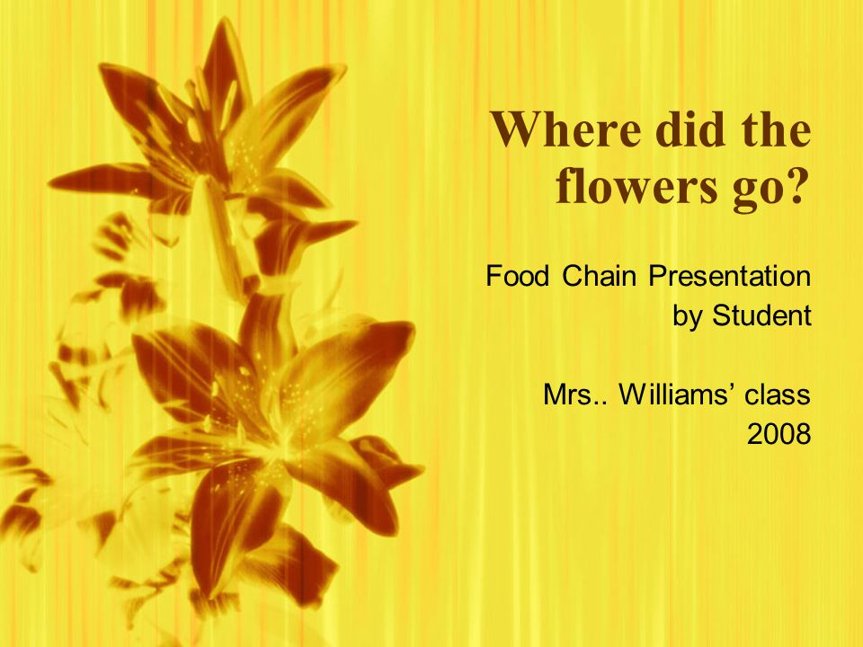 Where did the flowers go.Food Chain Presentation by Student Mrs..