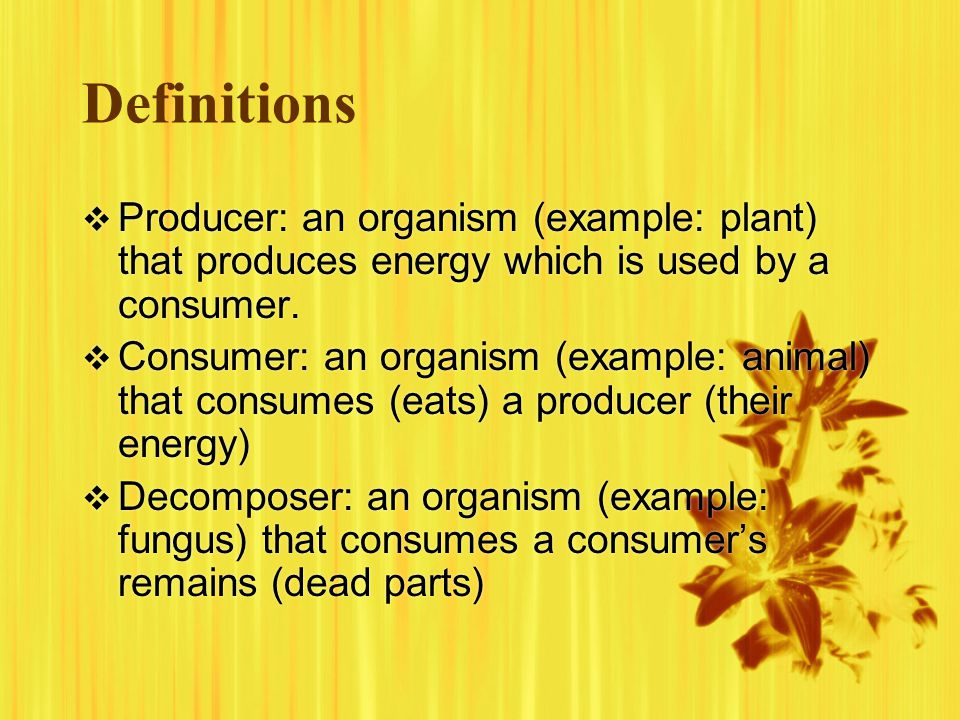 Definitions Producer: an organism (example: plant) that produces energy which is used by a consumer.