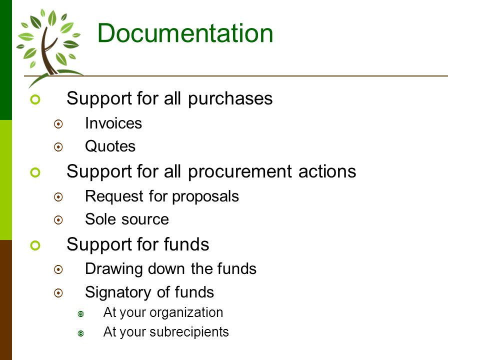 Documentation Support for all purchases Invoices Quotes Support for all procurement actions Request for proposals Sole source Support for funds Drawing down the funds Signatory of funds At your organization At your subrecipients