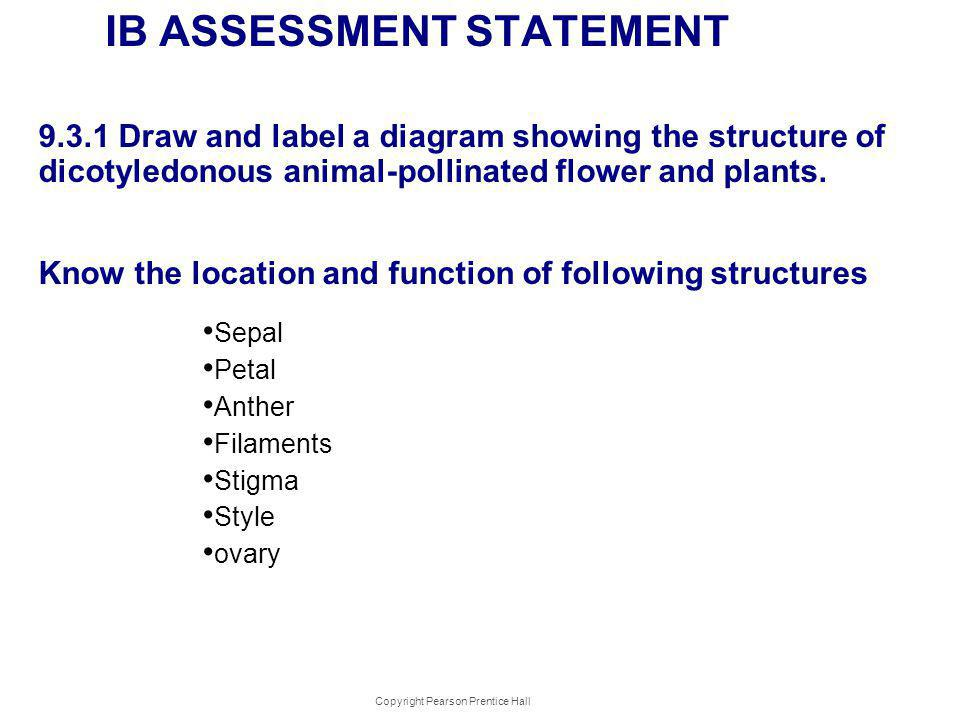 IB ASSESSMENT STATEMENT 9.3.1 Draw and label a diagram showing the structure of dicotyledonous animal-pollinated flower and plants. Know the location