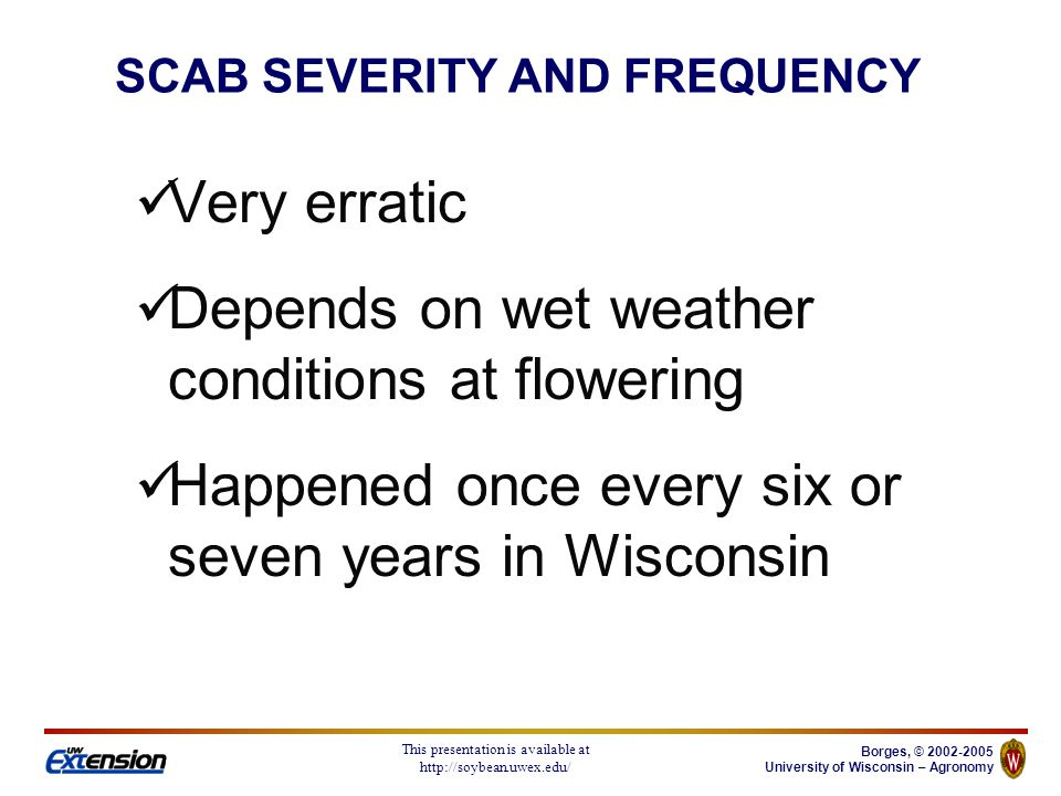 Borges, © 2002-2005 University of Wisconsin – Agronomy This presentation is available at http://soybean.uwex.edu/ Corn, oats, barley, sorghum, and other grasses On corn, it causes root, stalk, and ear rot (giberela) On sorghum, it causes stalk rot May cause root rot in small grains ALTERNATIVE HOSTS