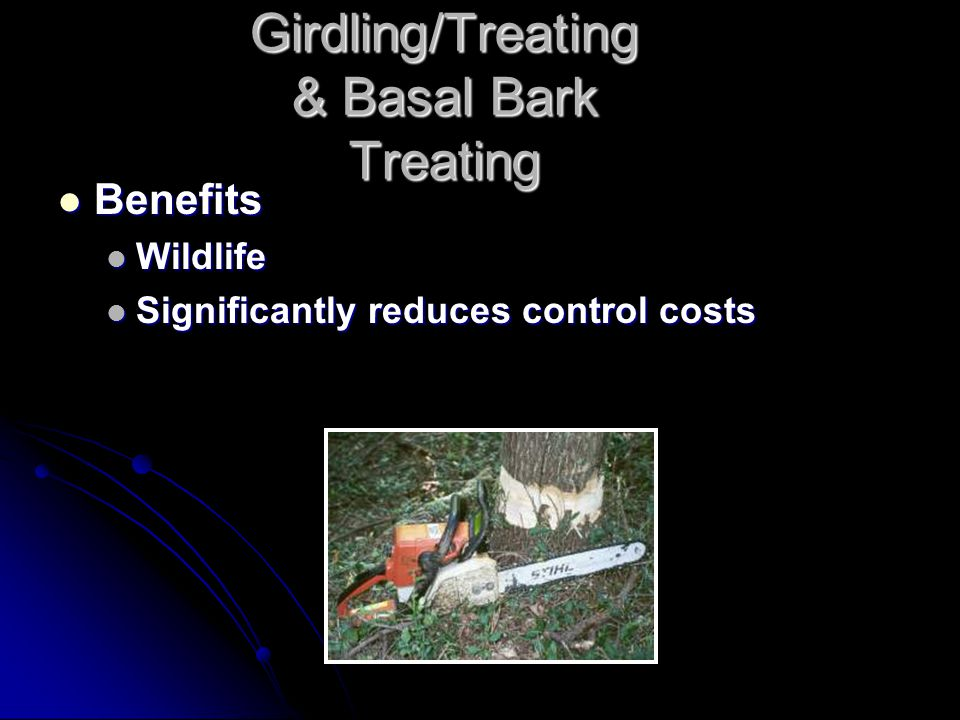 Girdling/Treating & Basal Bark Treating Benefits Benefits Wildlife Wildlife Significantly reduces control costs Significantly reduces control costs