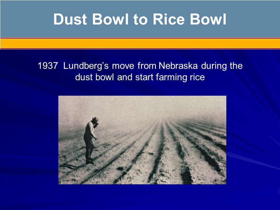 1937 Lundbergs move from Nebraska during the dust bowl and start farming rice Dust Bowl to Rice Bowl