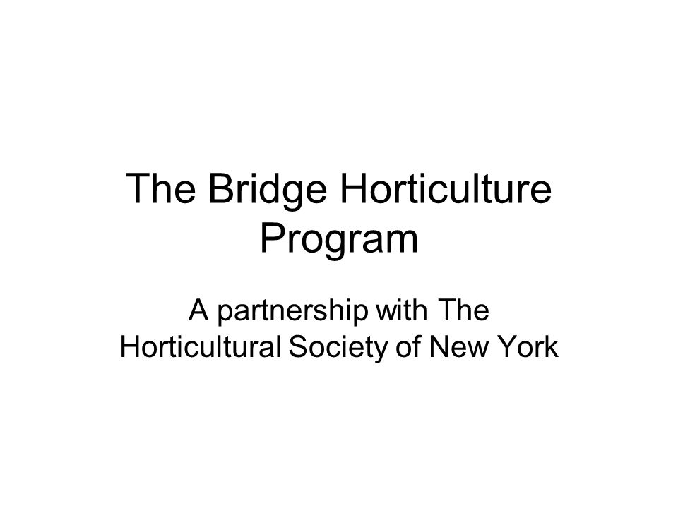 The Bridge Horticulture Program A partnership with The Horticultural Society of New York