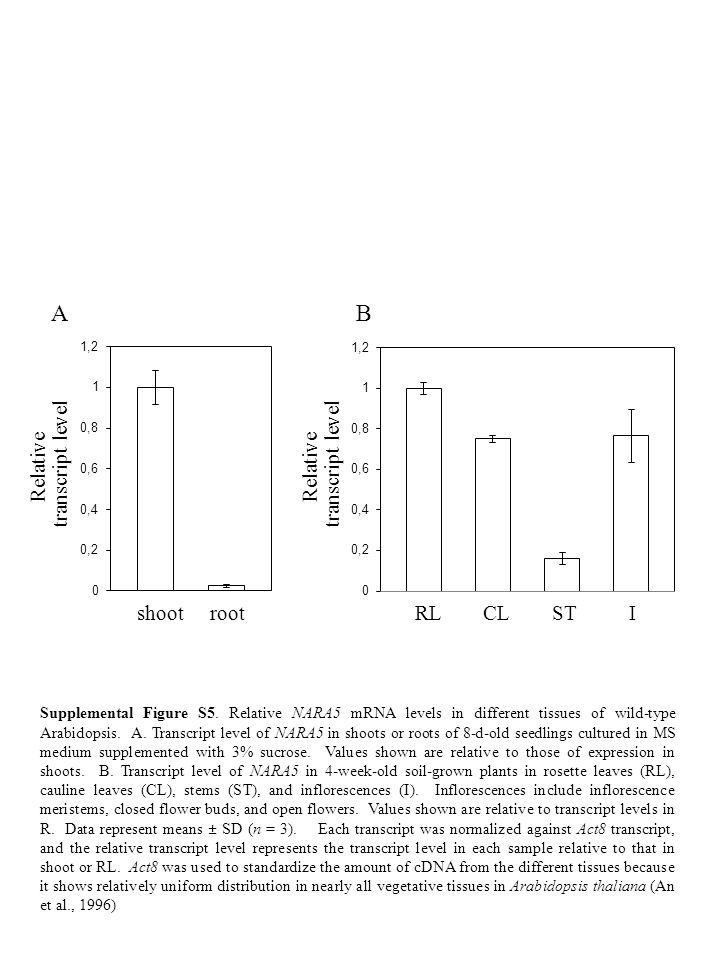 AB shootrootRLCLSTI Relative transcript level Relative transcript level Supplemental Figure S5. Relative NARA5 mRNA levels in different tissues of wil