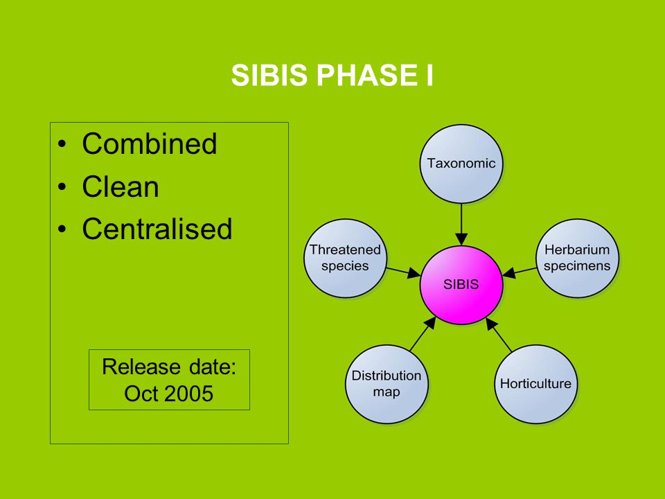 SIBIS PHASE I Combined Clean Centralised Release date: Oct 2005