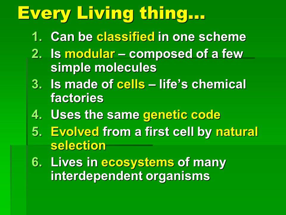 Ways of Thinking About Living Things Biosphere Biosphere Ecosystem Ecosystem Community Community Population Population Organism Organism Anatomy & physiology Anatomy & physiology Cellular Cellular Molecular Molecular
