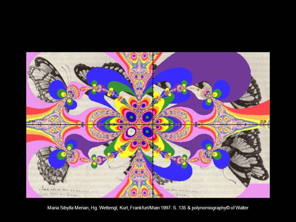 Maria Sibylla Merian, Hg. Wettengl, Kurt, Frankfurt/Main 1997. S. 135 & polynomiography© of Walter
