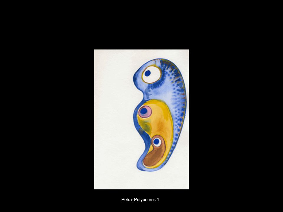 Petra: Polyonoms 1