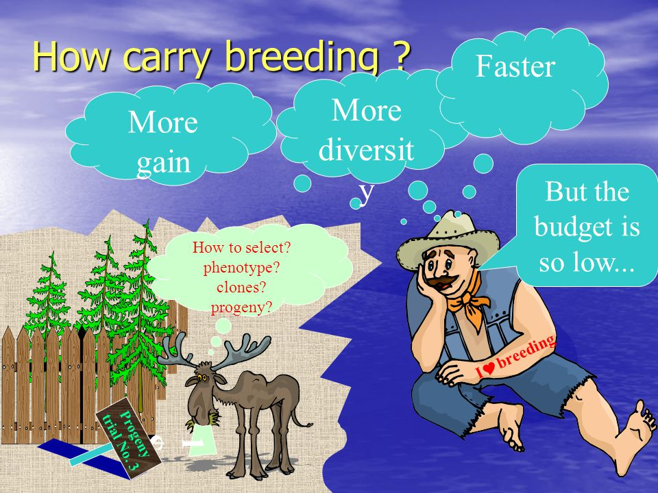 Constraints and limitations of breeding cycler - continued Plant cost is seen as independent of age of evaluation.