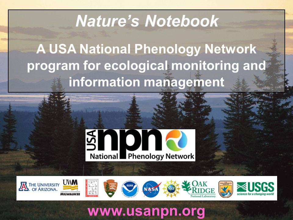 www.usanpn.org Natures Notebook A USA National Phenology Network program for ecological monitoring and information management