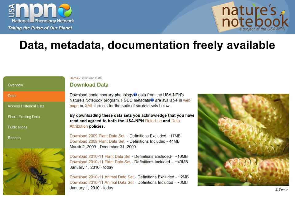Data, metadata, documentation freely available a project of the USA-NPN