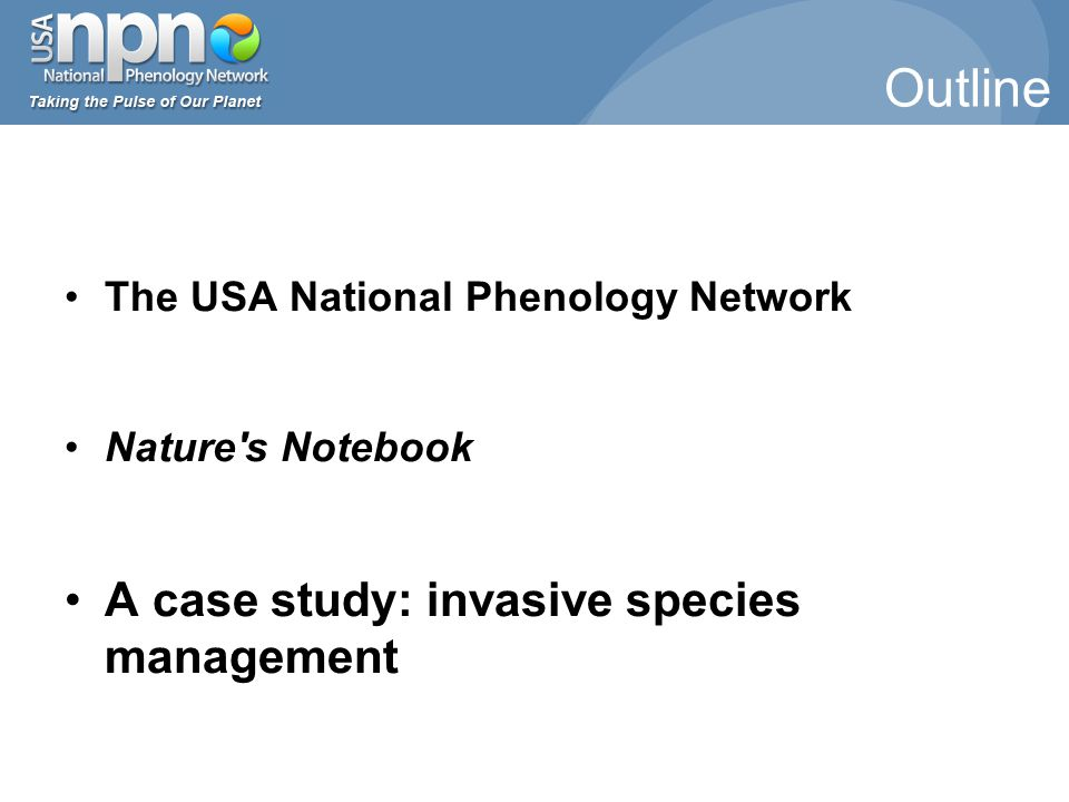 The USA National Phenology Network Nature s Notebook A case study: invasive species management Outline