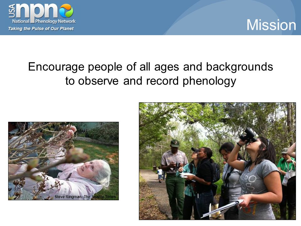 Steve Ringman, The Seattle Times Encourage people of all ages and backgrounds to observe and record phenology Mission