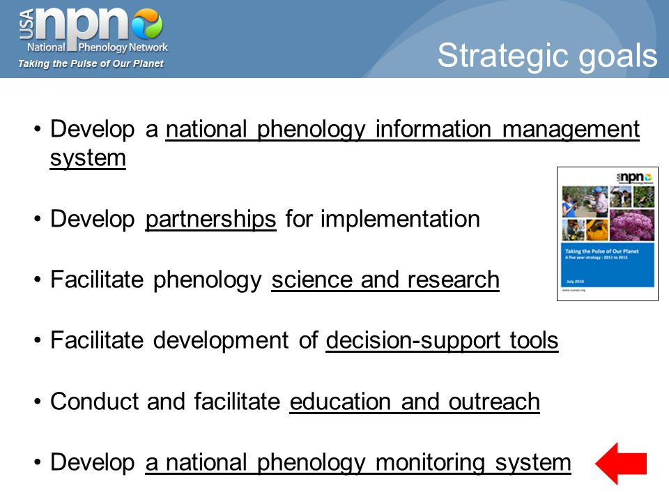 Strategic goals Develop a national phenology information management system Develop partnerships for implementation Facilitate phenology science and research Facilitate development of decision-support tools Conduct and facilitate education and outreach Develop a national phenology monitoring system