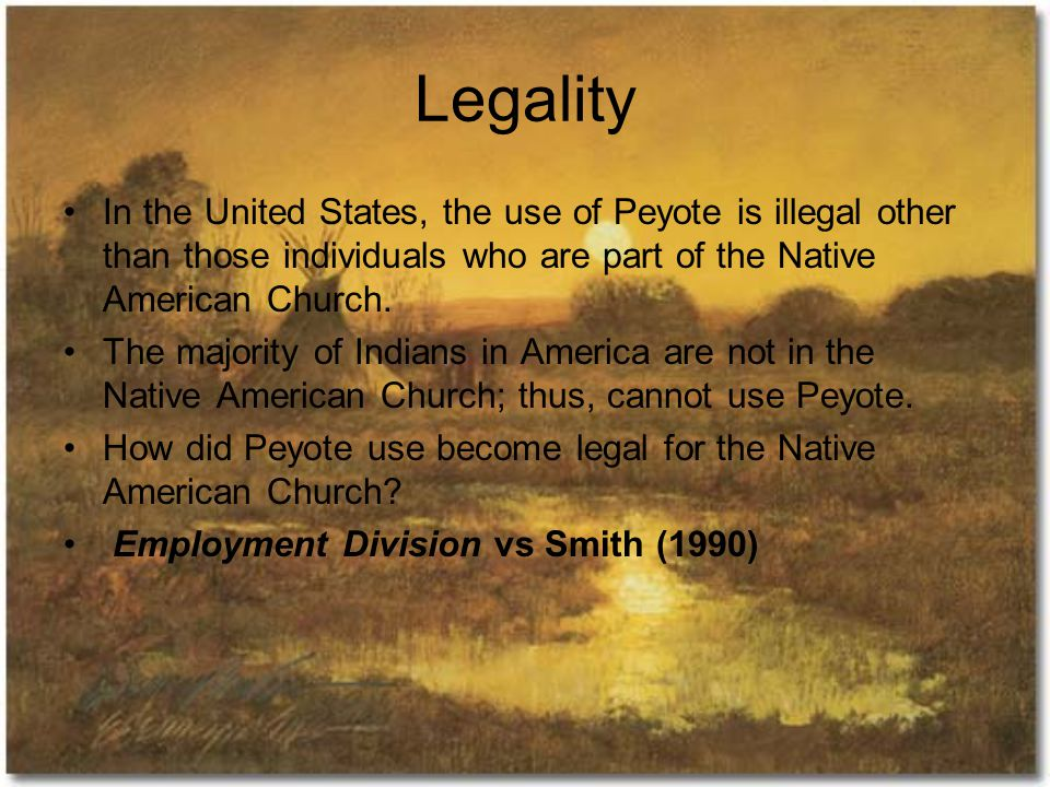 Legality In the United States, the use of Peyote is illegal other than those individuals who are part of the Native American Church.