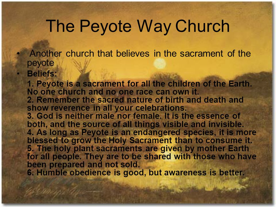 The Peyote Way Church Another church that believes in the sacrament of the peyote Beliefs: 1.