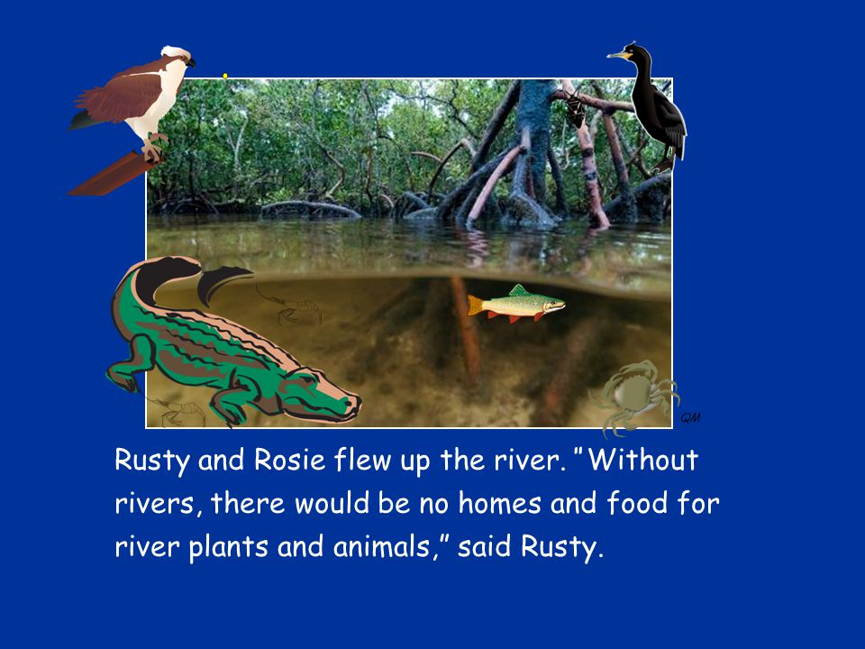 Rusty and Rosie flew up the river.