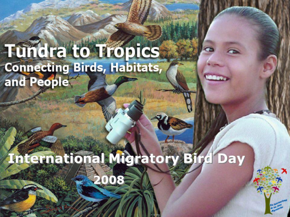 International Migratory Bird Day 2008