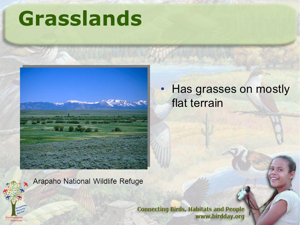 Grasslands Has grasses on mostly flat terrain Arapaho National Wildlife Refuge