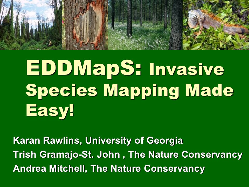 EDDMapS: Invasive Species Mapping Made Easy! Karan Rawlins, University of Georgia Trish Gramajo-St. John, The Nature Conservancy Andrea Mitchell, The