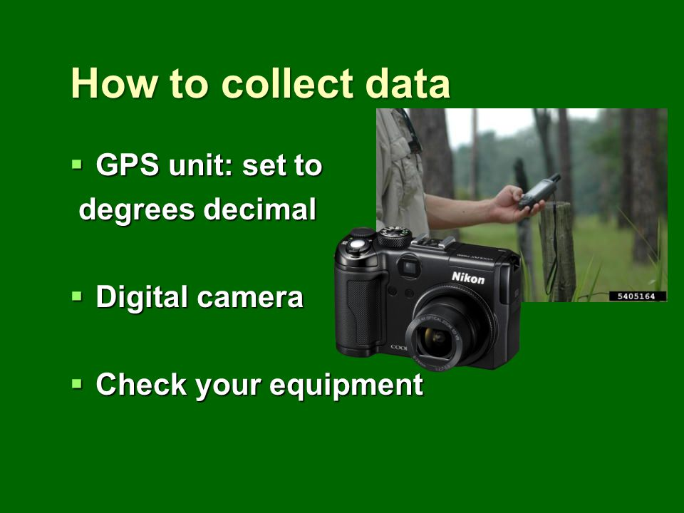How to collect data GPS unit: set to GPS unit: set to degrees decimal degrees decimal Digital camera Digital camera Check your equipment Check your eq