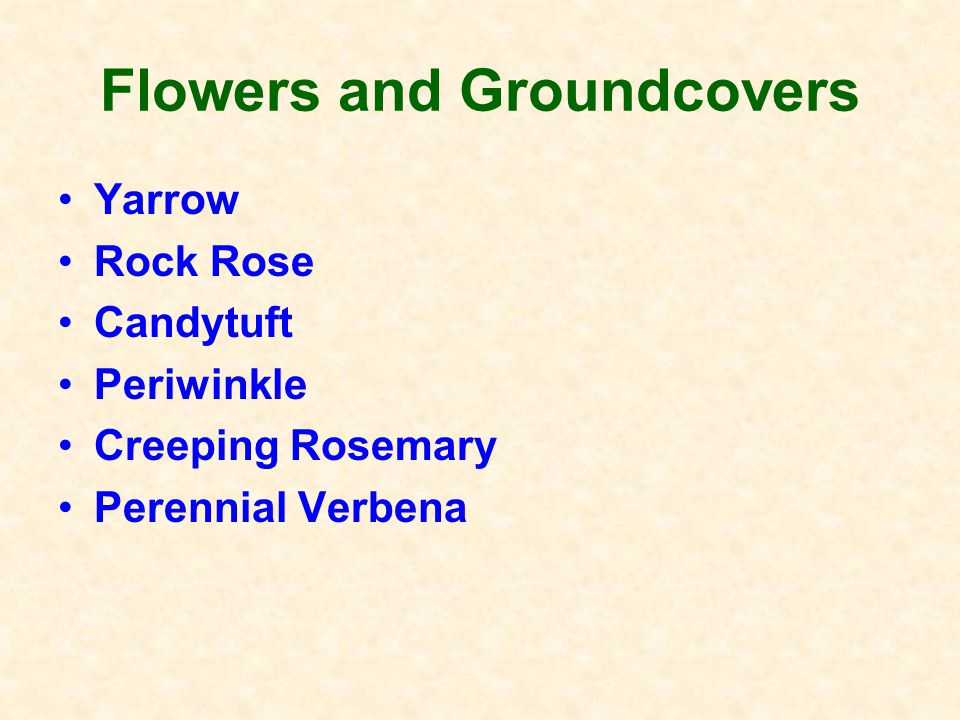 Plant Lists for El Dorado Co. Check out the Master Gardener website.