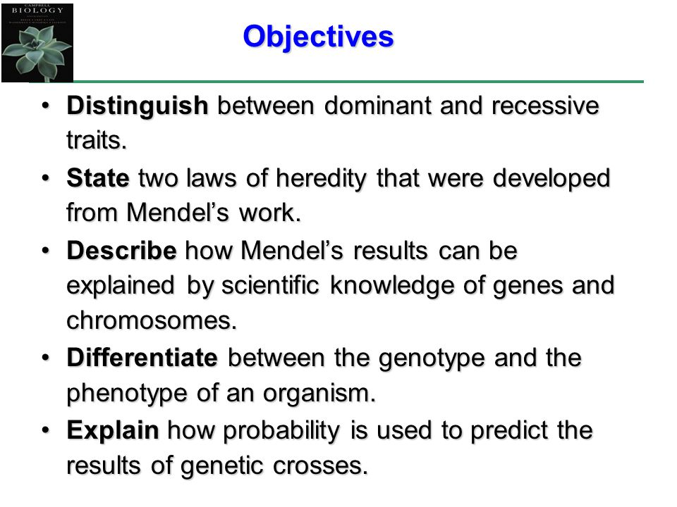 Objectives Distinguish between dominant and recessive traits.Distinguish between dominant and recessive traits. State two laws of heredity that were d