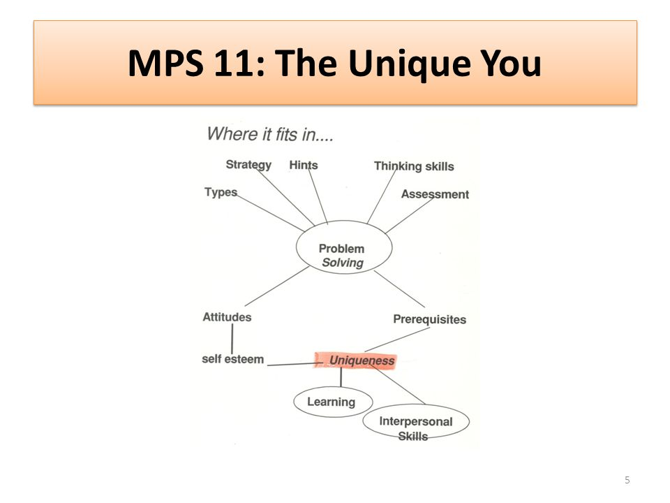 MPS 11: The Unique You 5